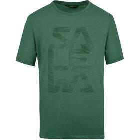 SALEWA Salewa Print Dry T-Shirt Men, myrtle melange